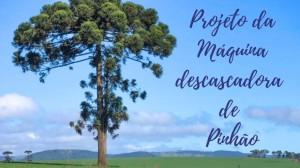 descascadora_pinhao